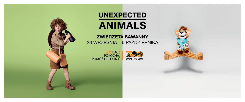 spotkanie z wyjątkowymi zwierzętami z sawanny
