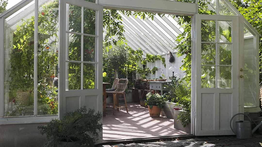 Besök vårt växthus i Atrium