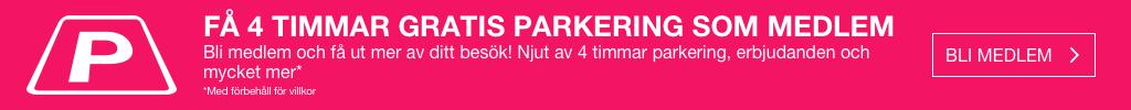 Fyra timmars parkering